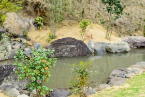 株式会社 清水造園 施工事例